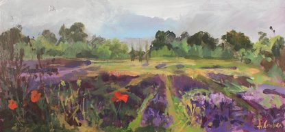 New Forest Lavender