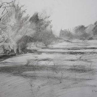 Meadows Pencil And Charcoal