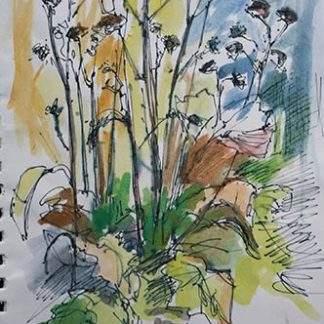 Pen Watercolour