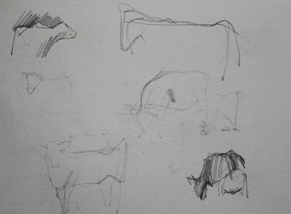 Studying Cow Forms Graphite