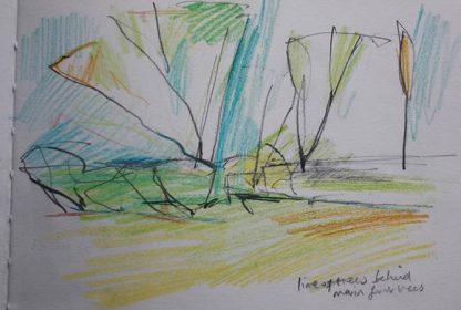 Trees Clarendon Pencil