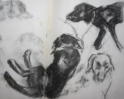 Dogs In Charcoal